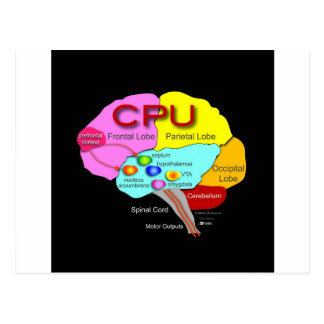CPU Brain Postcard