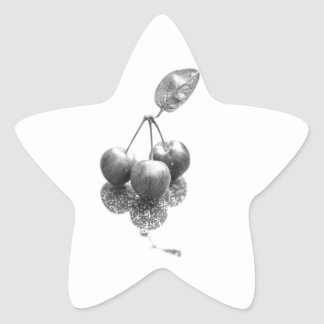 Crab Appels Star Sticker