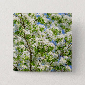 Crab apple blossom button