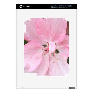Crab Apple Blossom Close Up iPad 3 Skins