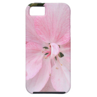 Crab Apple Blossom Close Up iPhone SE/5/5s Case