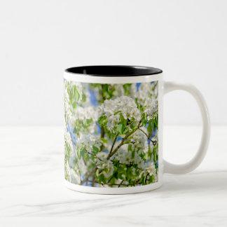 Crab apple blossom Two-Tone coffee mug