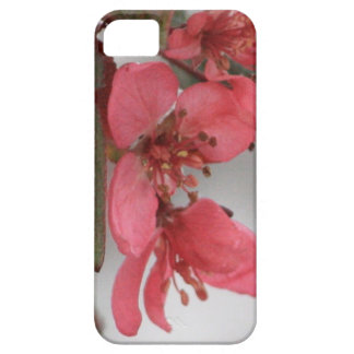 Crab Apple Blossoms iPhone SE/5/5s Case