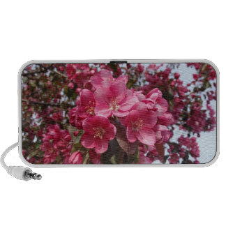 Crab Apple Blossoms iPod Speakers