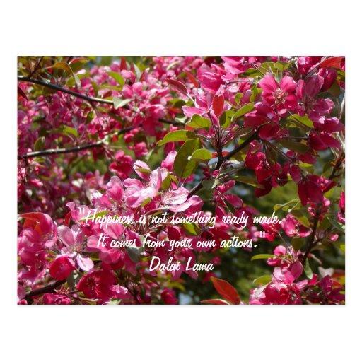 Crab Apple Flowers with Dalai Lama Quote Postcard