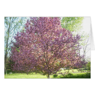 Crab-apple Tree in Bloom Card