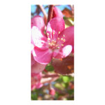 Crab Apple Tree in Bloom Customized Rack Card