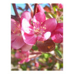 Crab Apple Tree in Bloom Letterhead Design