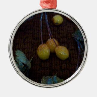 Crab Apples In The Dark Metal Ornament