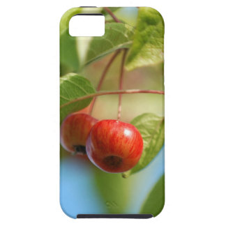 Crab apples iPhone SE/5/5s case