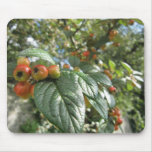 Crab Apples Mouse Pad