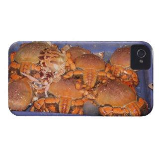 Crab Blackberry Bold Case