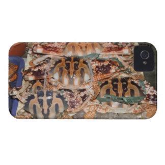 Crab Blackberry Case