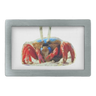 CRAB exotic from Zanzibar Island Beaches waters Belt Buckle