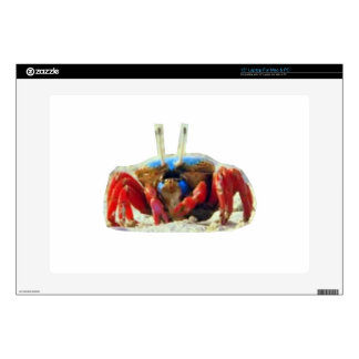 CRAB exotic from Zanzibar Island Beaches waters Laptop Decal