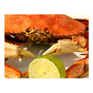 Crab Feast Invitation Postcard