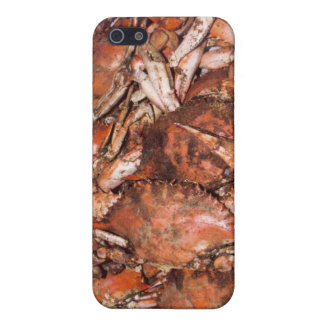 Crab Feast iPhone SE/5/5s Cover