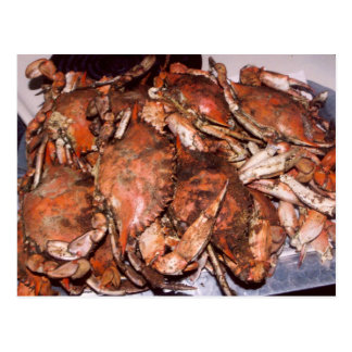 Crab Feast Postcard