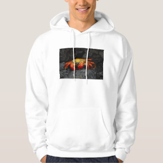 Crab Grapsus Grapsus From The Galapagos Islands Hoodie