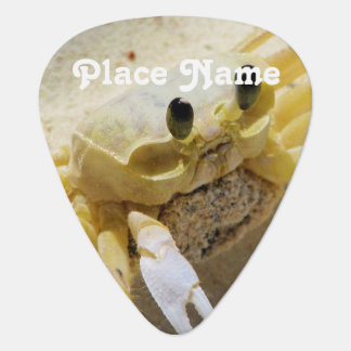Crab Guitar Pick
