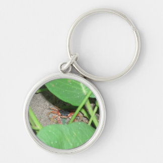 Crab hiding keyring keychain