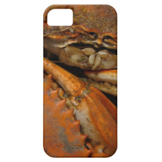 Crab iPhone 5/5s, Barely There case