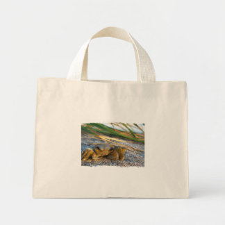 Crab on beach dune at sunset canvas bag
