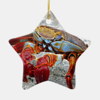 Crab photo Double-Sided star ceramic christmas ornament