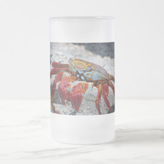 Crab photo mugs