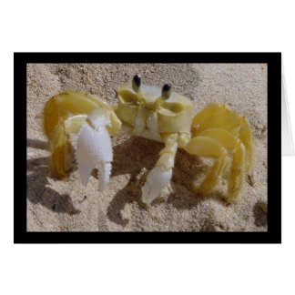 Crab Photography Greeting Card