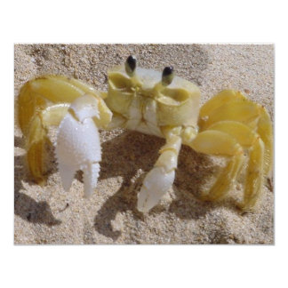 Crab Photography 4.25x5.5 Paper Invitation Card