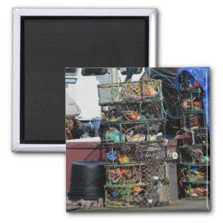 Crab Pots 2 Inch Square Magnet