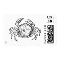 Crab | Seafood Boil Postage
