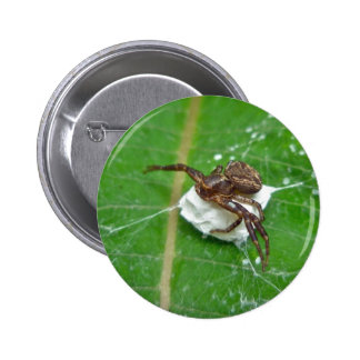 Crab Spider on Milkweed Coordinating Items Buttons