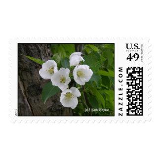 Crabapple 07 stamp