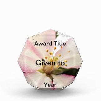 Crabapple Blossom Acrylic Award