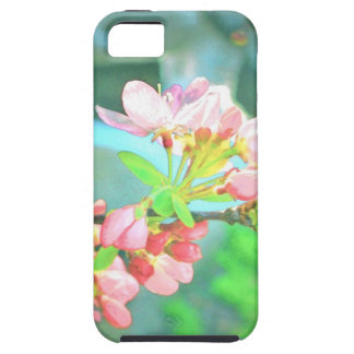 Crabapple Blossoms, Circa 1955 ~ iPhone Case iPhone 5 Covers