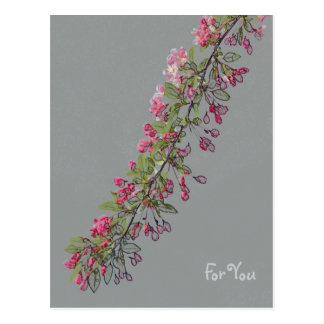 Crabapple Blossoms from Central Park Postcard
