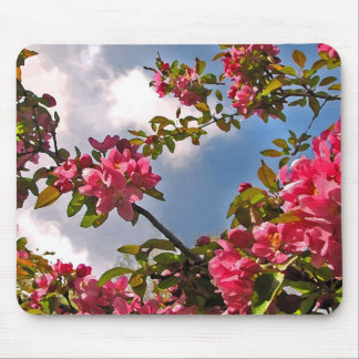 Crabapple Blossoms Mouse Pad