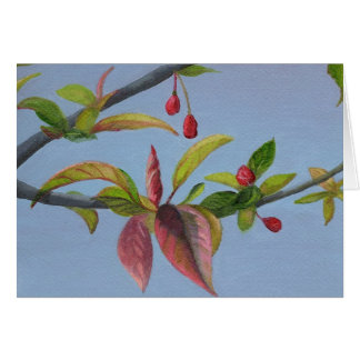 crabapple blossoms stationery note card