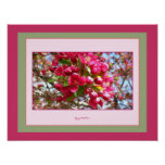 Crabapple florece poster de 2 fotos cerca gretchen