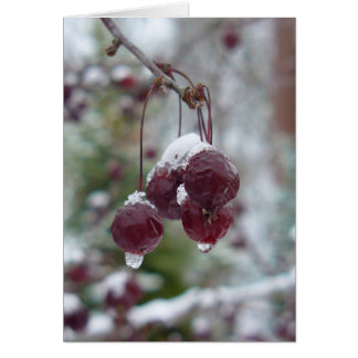 Crabapple Ice Card