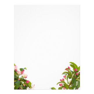 Crabapple Tree Blossoms Letterhead Paper