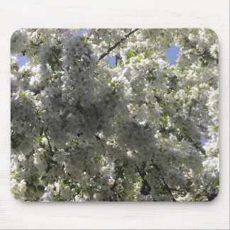 Crabapple Tree Blossoms Mouse Pad