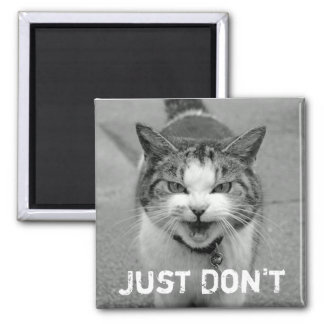 Crabby Cat Magnet
