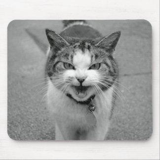 Crabby Cat Mousepad