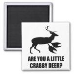 Crabby Deer Magnets