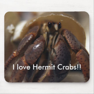 crabby, I love Hermit Crabs!! Mouse Pad