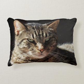 Crabby Tabby Cat Accent Pillow