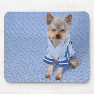 Crabby Yorkie Dog, Add Your Own Text ! Mouse Pad